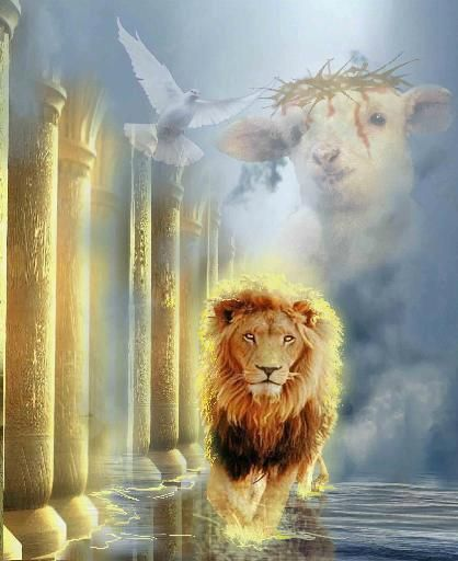 Lion Of Judah Art For Sale Lion Of Judah Prophetic Art Lion And Lamb