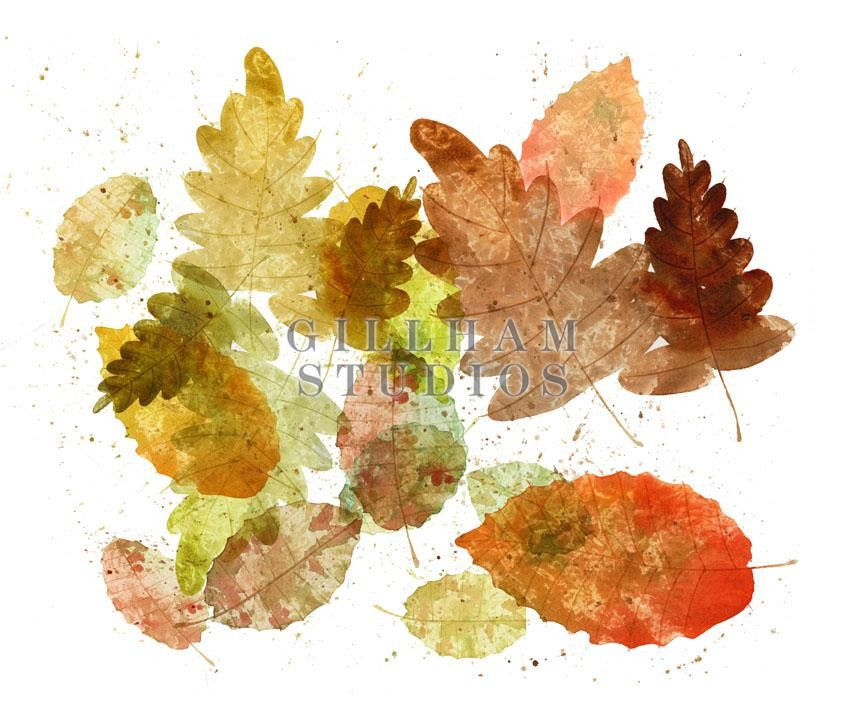 Watercolor fall leaves by Craig Lueck — available on Hallmark's new stock site: GillhamStudios.com #royaltyfree