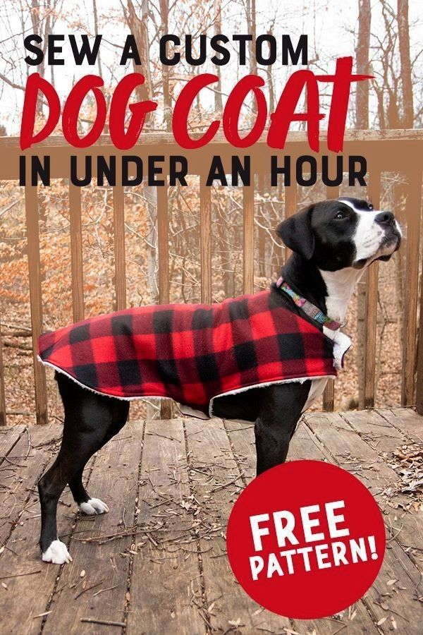 to Sew a Cozy Custom Dog Coat in Less than an Hour How to Sew a Cozy Custom Dog Coat in Less than an Hour How to Sew a Cozy Custom Dog Coat in Less than an Hour This cozy...
