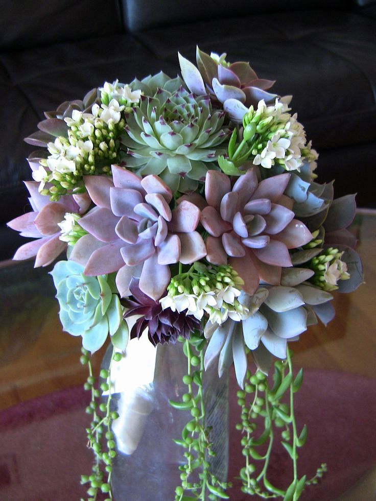 Wedding Centerpieces Succulents Elegant 148 Best Succulent
