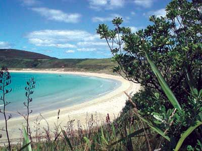 Matai Bay. Our favourite holiday destination.