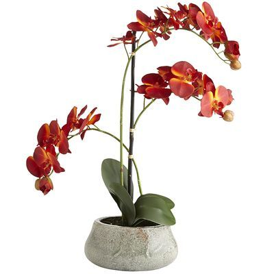 Faux Phalaenopsis Orchid - Red