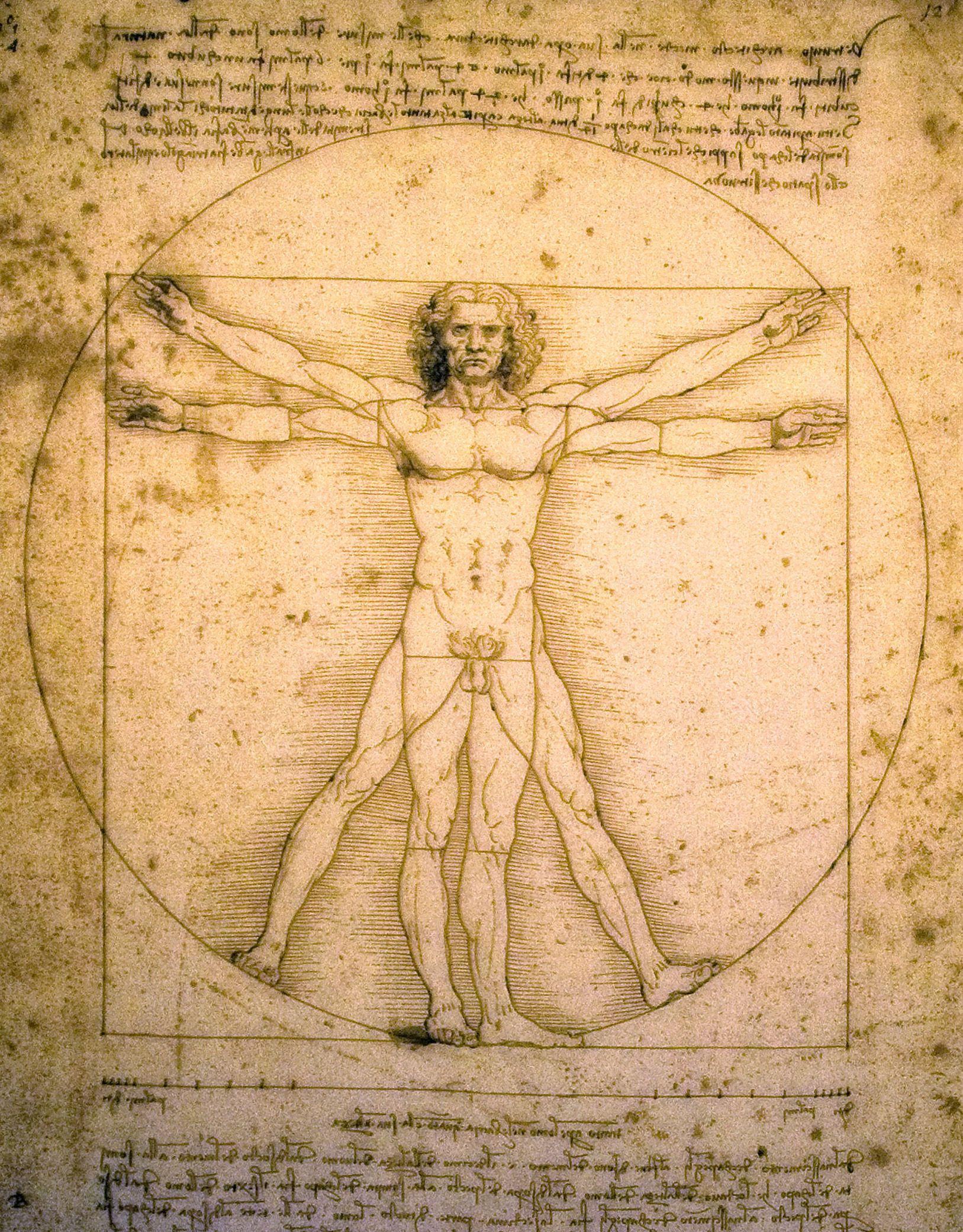 Latest 1 627 2 081 Pixels El Hombre De Vitruvio Vitruvio Tecnicas De Dibujo