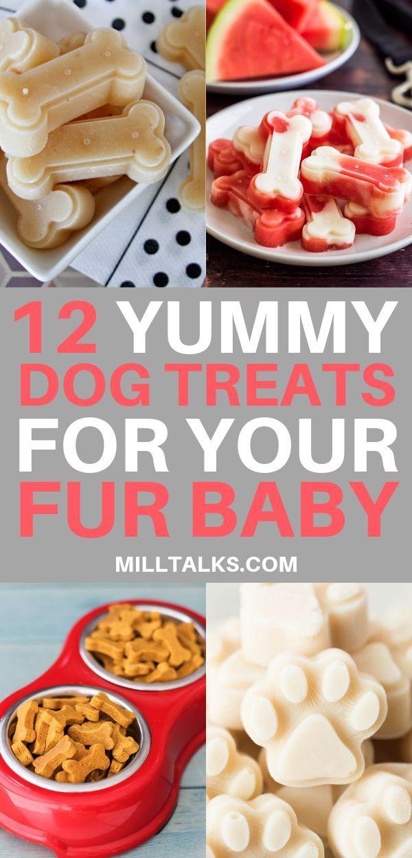 12 Yummy Homemade Dog Treat Recipes