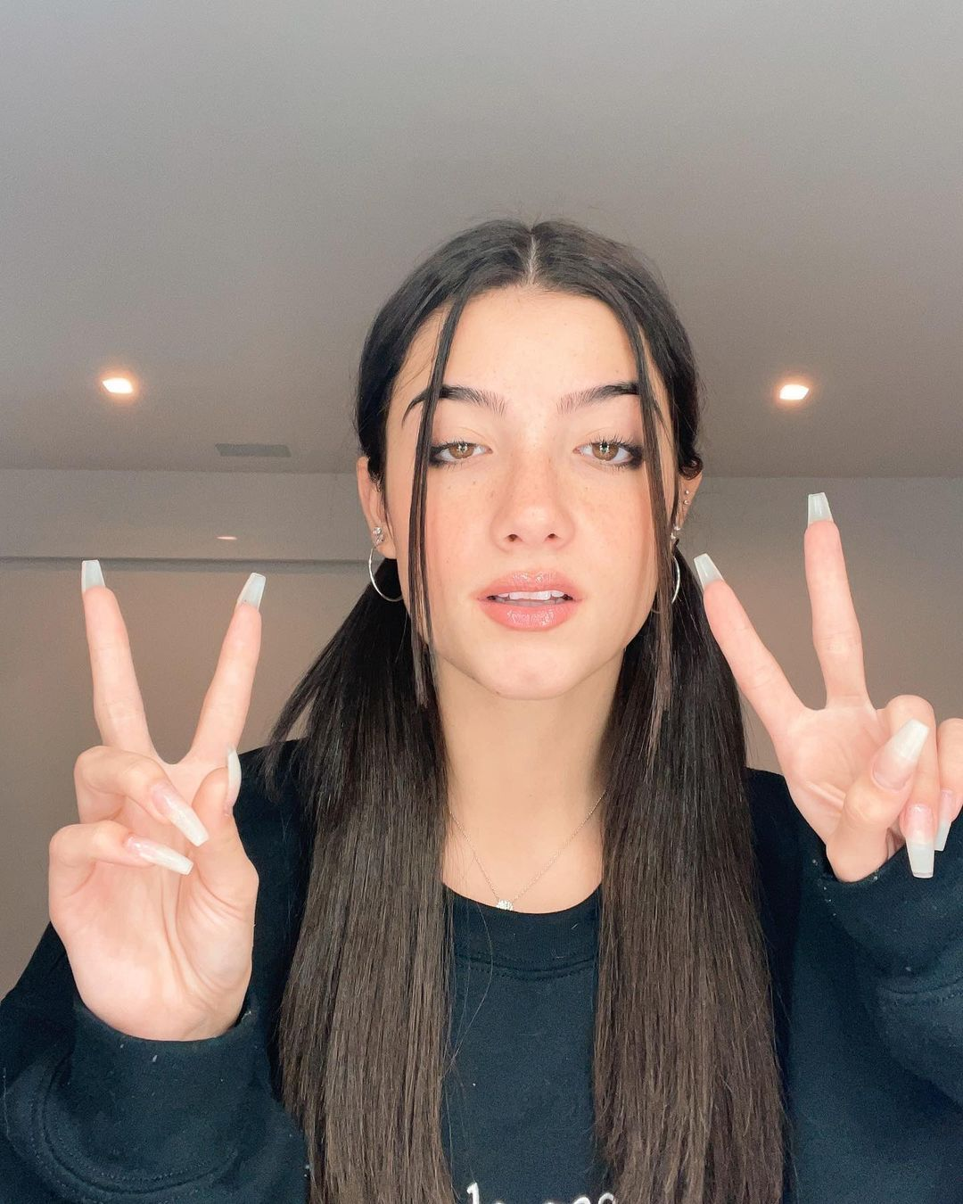 Charli Damelio Famous Girls The Most Beautiful Girl Hair Styles