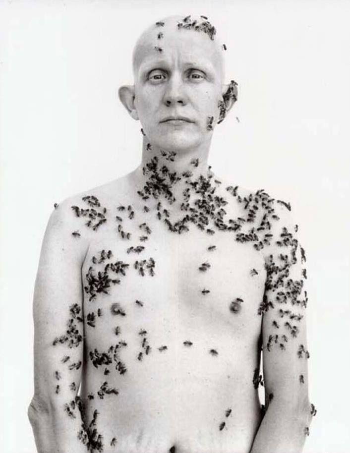 Ronald Fischer, Beekeeper by Richard Avedon, 1981. —  https://www.facebook.com/pages/ARTE-Maestre/186806941462121?ref=hl