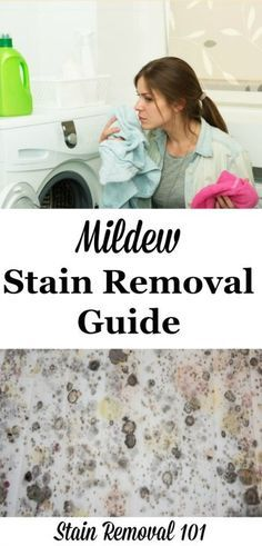 Mildew Stain Removal Guide Mildew Stains Stain Removal Guide Stain Remover