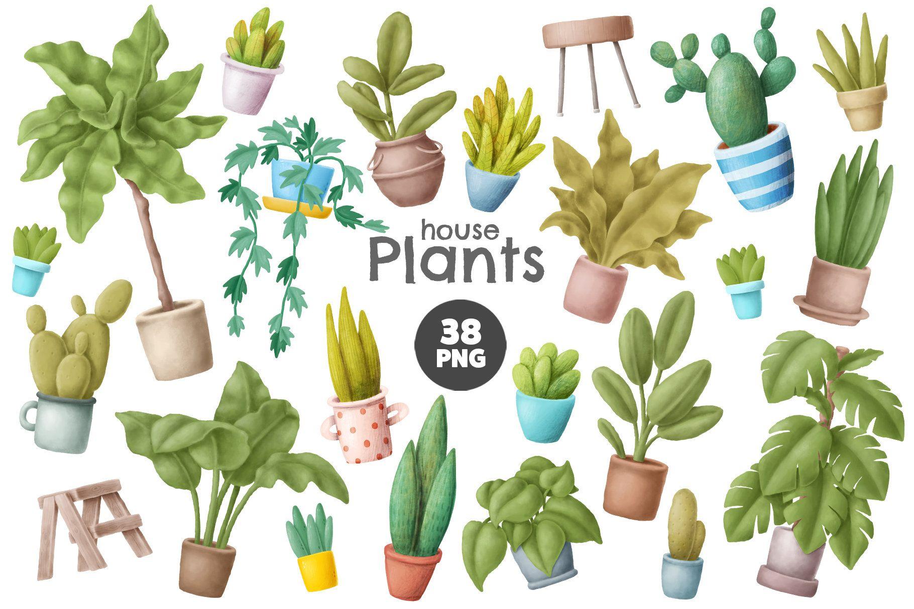House Plants Clipart - Flower Pot Illustration - Png Download (#1226415) -  PikPng