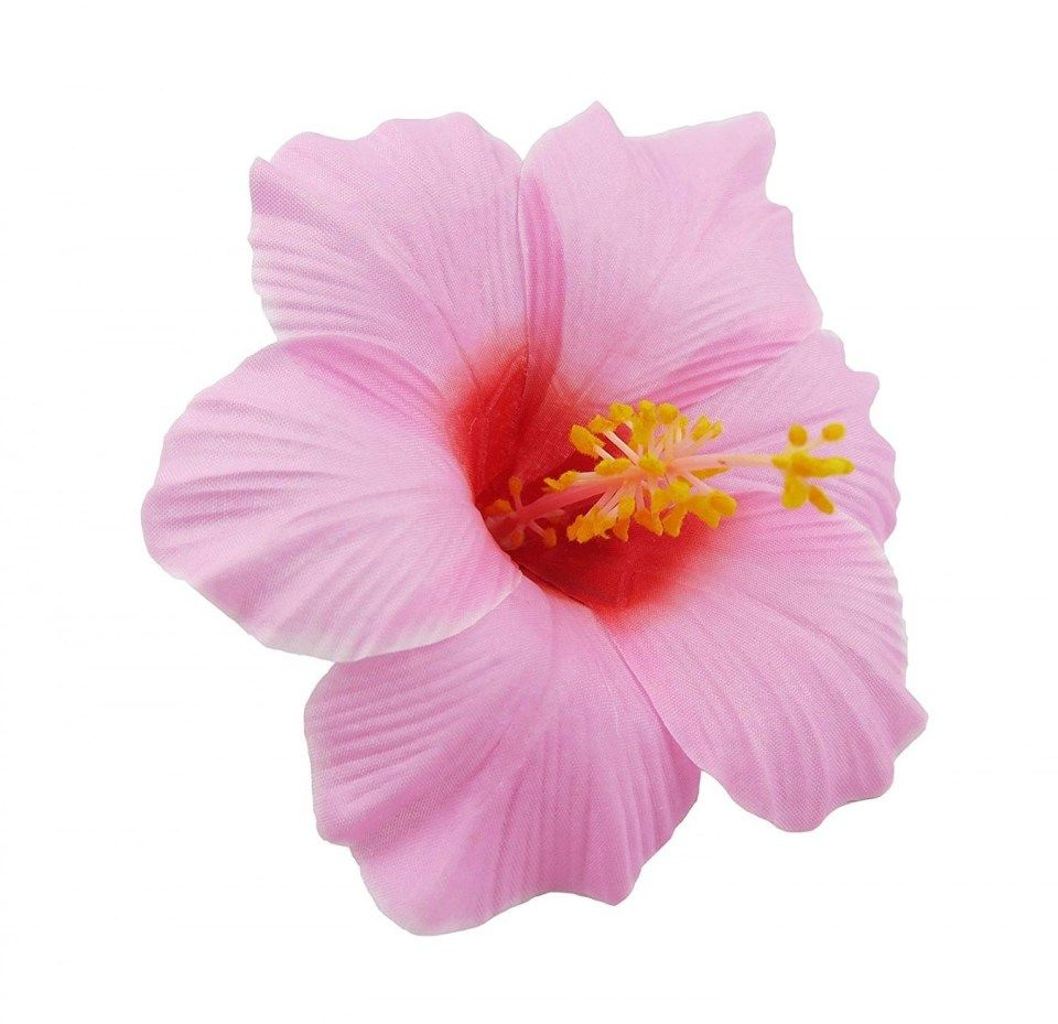 10 Important Facts That You Should Know About Rose Flower Quilt Flowers In Hair Flower Hair Clips Hibiscus Flowers