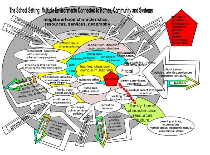ecological system applied to school