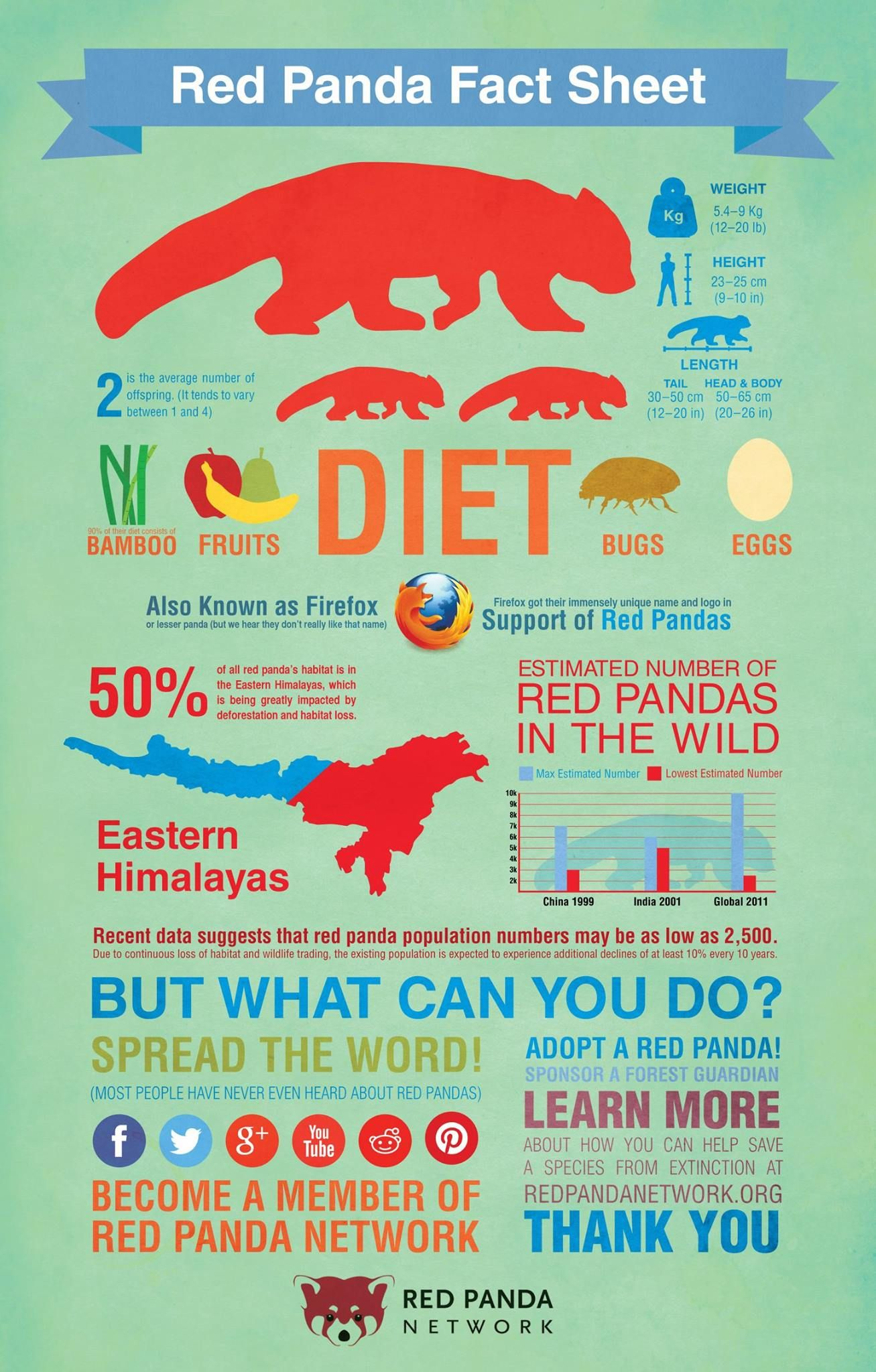 Red Panda Fact Sheet Infographic