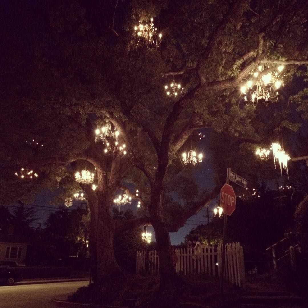 The Chandelier Tree is One of L.A.\'s Most Gorgeous Nighttime Gems ...