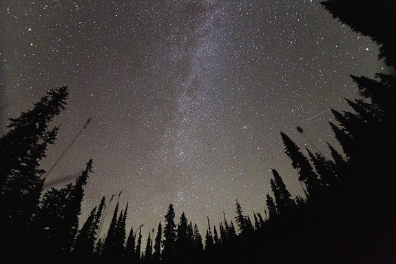 A starry night at Chilliwack Lake by @rjbruni