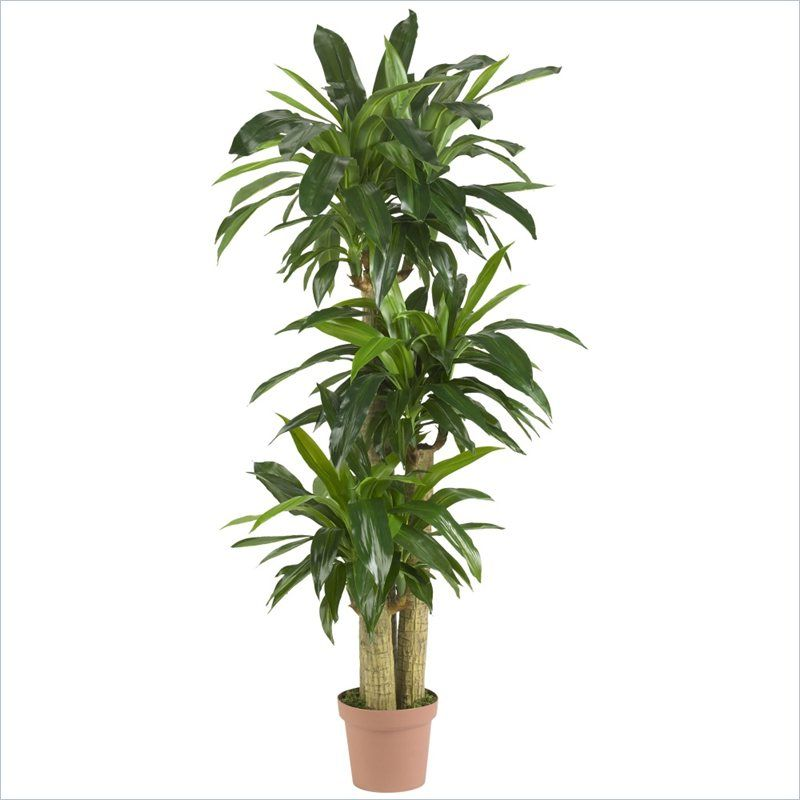 Nearly Natural Corn Stalk Dranaena Silk Plant (Real Touch) in Green - 6584