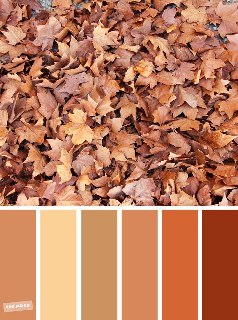 59 Pretty Autumn Color Schemes { Golden brown autumn leaves }