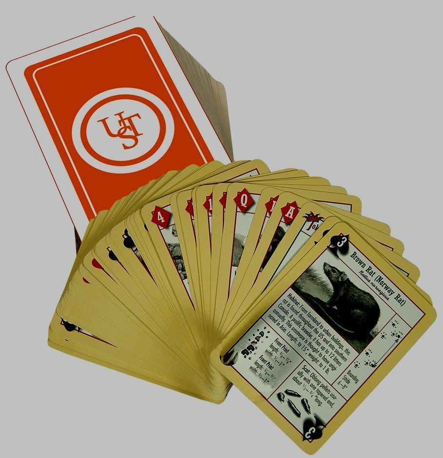 52 playing card deck survival tools emergency preparadness