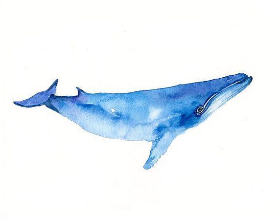 La ballena por DIMDImini 7x5inch imprimir por dimdimini en Etsy ...