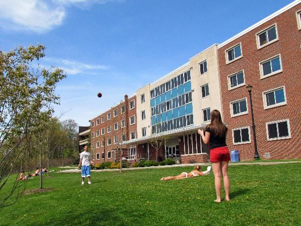 Cortland admissions essay