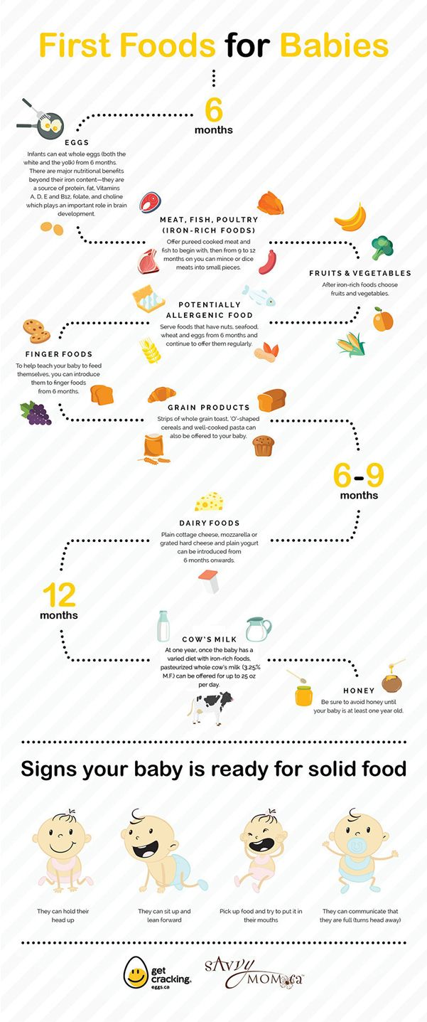 First Foods for Babies A SavvyMom Infographic Baby