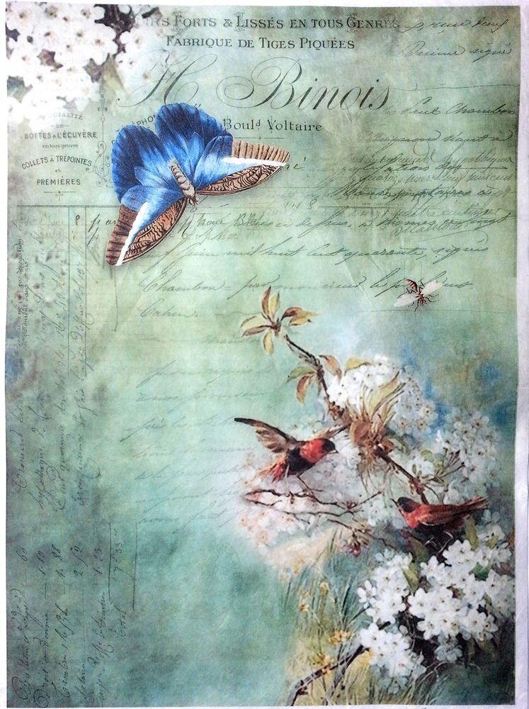 Papel De Arroz-Para Decoupage-hoja-Scrapbooking-A4-Amor Aves