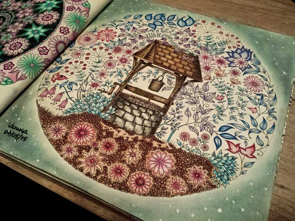Well Secret Garden Poco Jardim Secreto Johanna Basford Adult ColoringColoring BooksColouringColored PencilsWishing