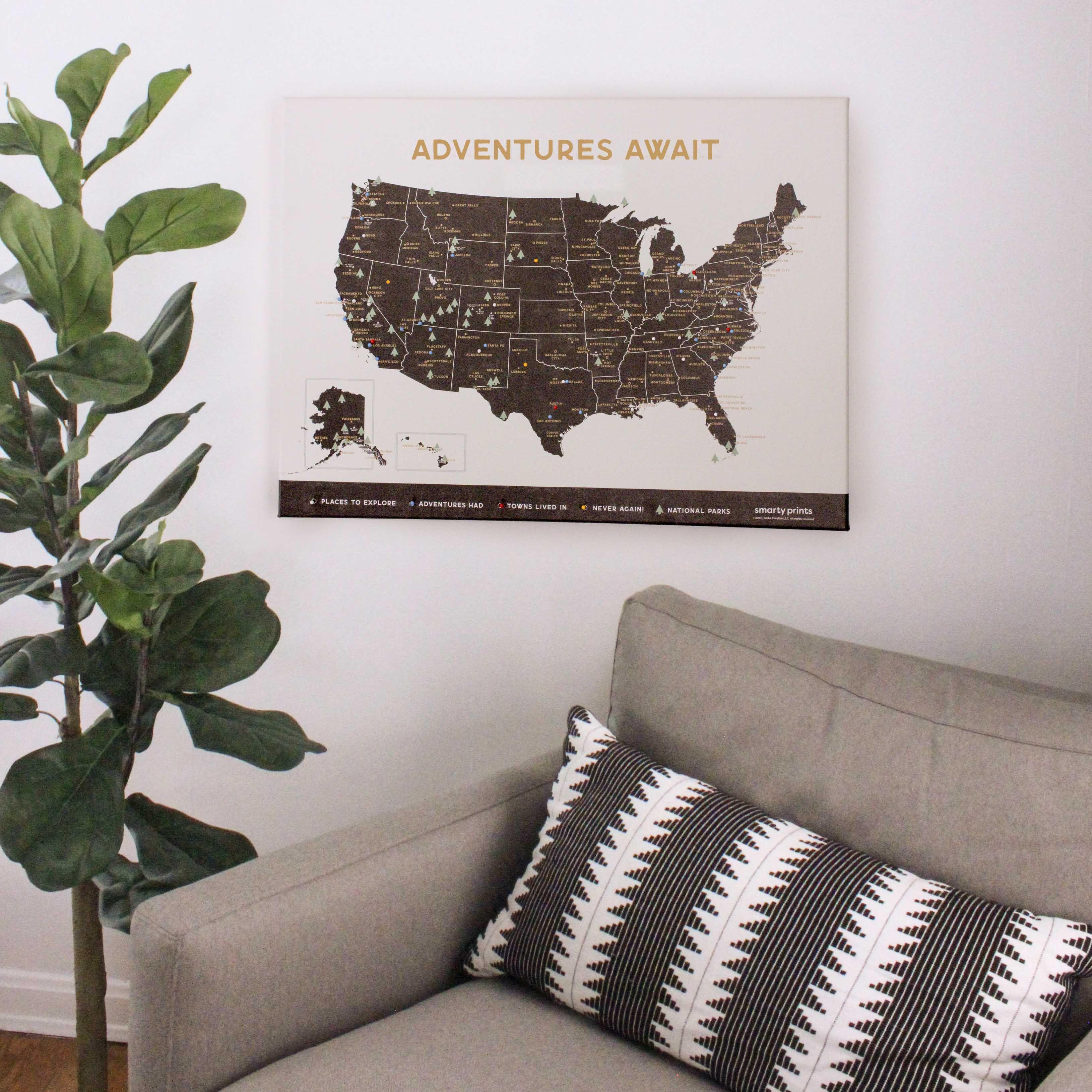 Travel Push Pin US Map