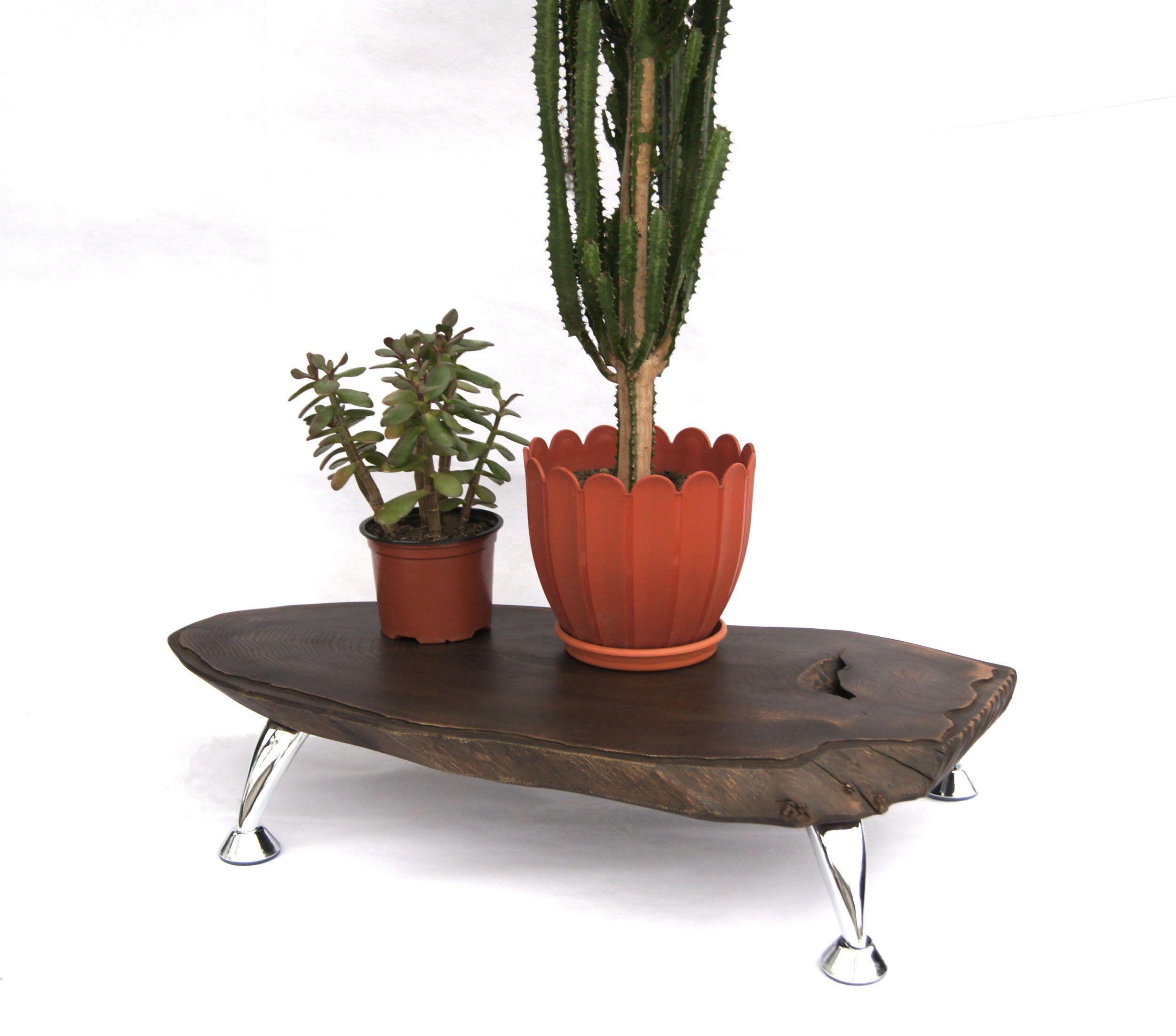 Large Tree Stump Indoor Pot Planter Live Edge Wood Stump