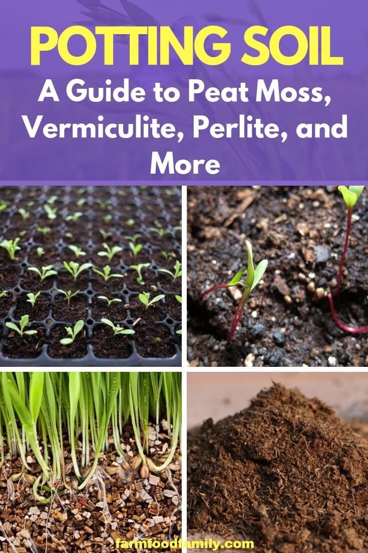 A Well Amended Rich Garden Soil May Produce Lush Healthy Plants Outdoors But It S Too Heavy And Dense To Use Fo Garden Soil Potting Soil Container Gardening