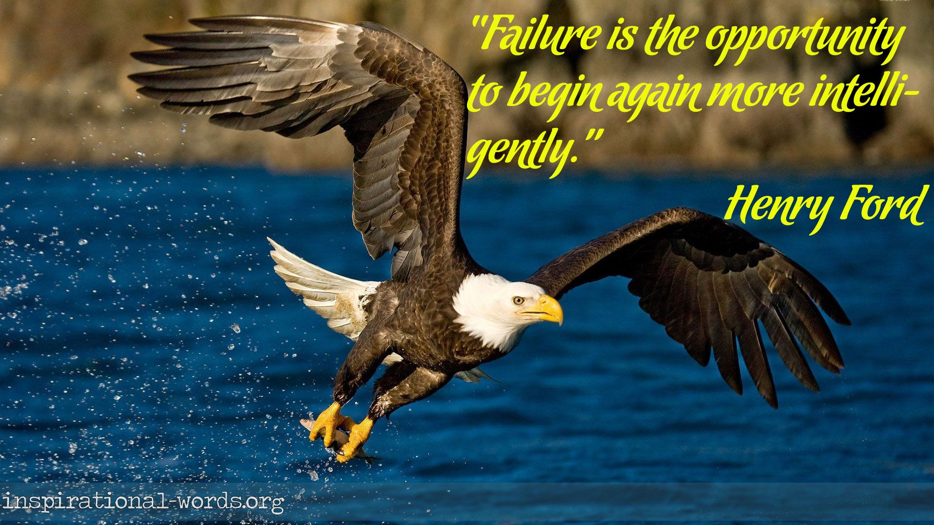 Inspirational Wallpaper Quote By Henry Ford Failure Is The Opportunity To Begin Again More Intelligently Eagle Pictures Eagle Wallpaper Bald Eagle