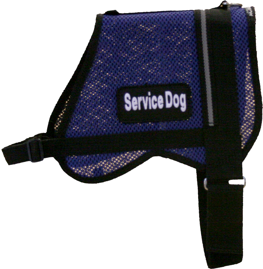 Our Mesh Vest is perfect for those water rescue dogs and