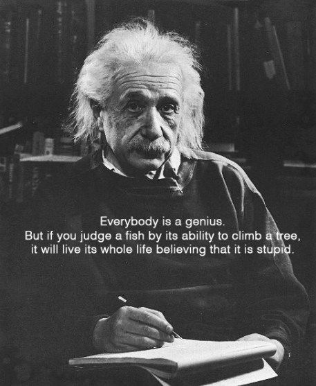 Einstein Quote On Genius Albert Einstein Dog Quote Quotes