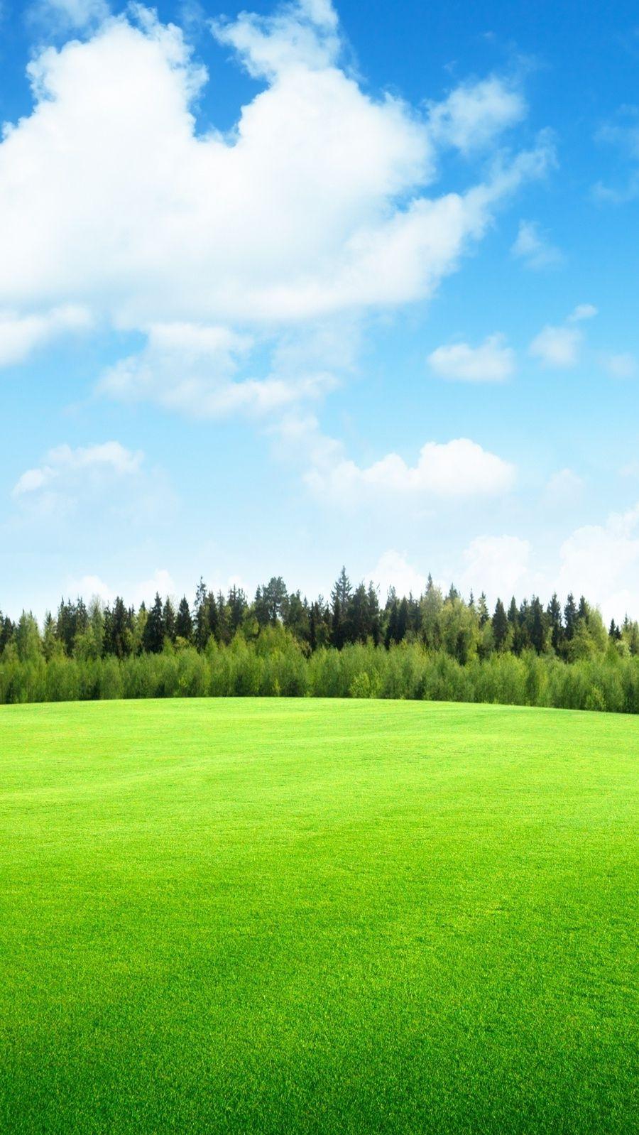 29+ Green Grass Wallpaper Aesthetic
