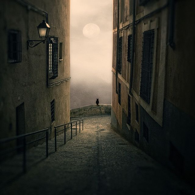enamorado de la Luna by LuisBeltrán, via Flickr