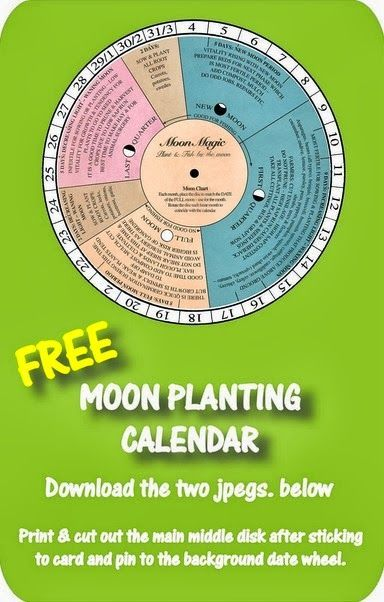 Gardening by The Moon & A Free Moon Planting Calendar ...