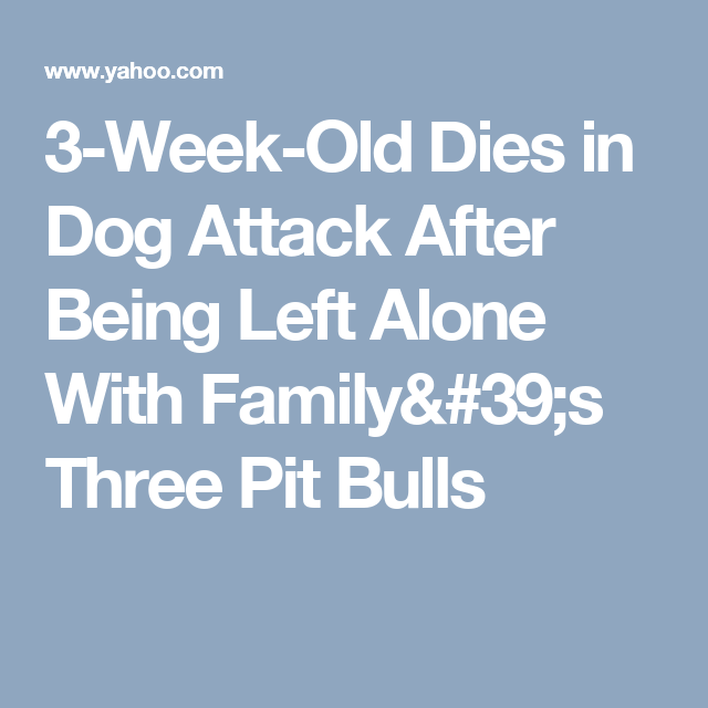 Image result for 3-Week-Old Dies in Dog Attack After Being Left Alone With Family's Three Pit Bulls