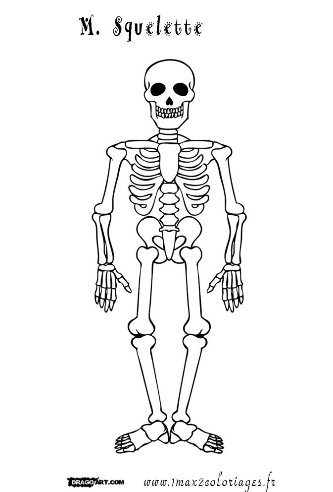 Squelette Dessin Halloween.Coloriage M Squelette Coloriage Dessin Squelette Squelette Et