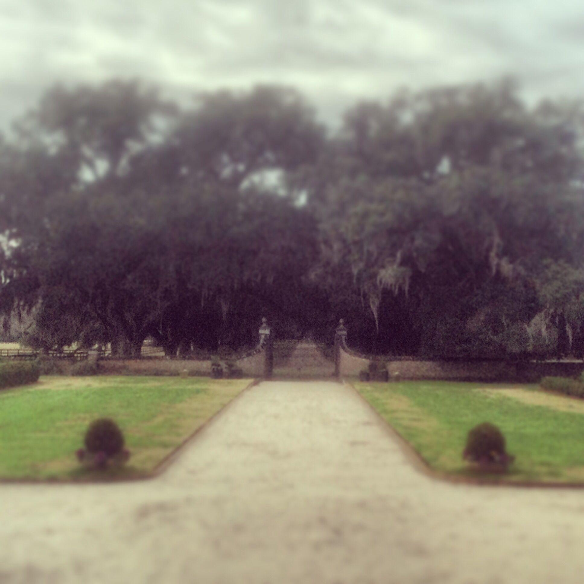 Pin on Boone hall plantation