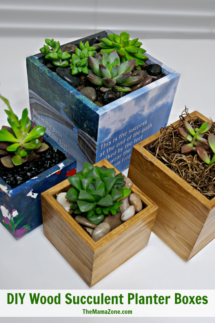 Planting Succulents In Boxes With No Drainage Wood Succulent Planter Succulent Planter Wooden Succulent Planter