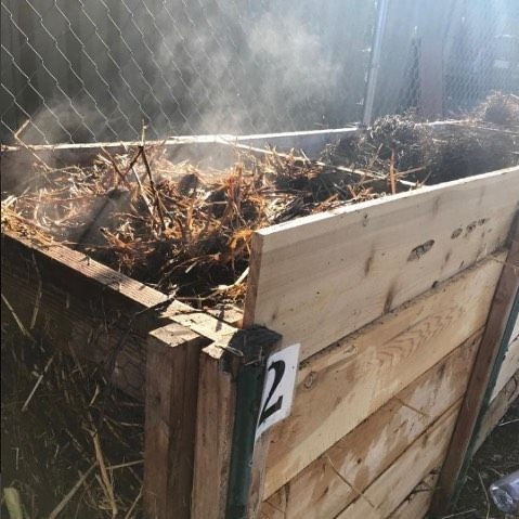 Getting steamy at @urbanlifefarms! 📷by our awesome Composter, @stowelltara . . . #Compost #Soil #MadeinSD #LivingSoil #CarbonFarm #FoodRecovery #ZeroWaste #ClimateChange #Terroir #RegenerativeAgriculture #CarbonSequestration #SocialEnterprise #SoilEcology #SoilFoodWeb #ElaineIngham #SoilMicrobiology #SanDiego #SanDiegoFood #FoodWaste #FoodRecovery #FeedTheSoil #SanDiegoEats #SanDiegoLife #EatSanDiego #LaJolla #PacificBeach #BirdRock #NorthPark #LittleItaly #Coronado #SustainableLiving #lajollal