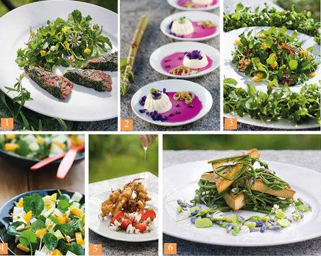 Je Cuisine Les Plantes Sauvages Cuisine Sauvage Cuisine