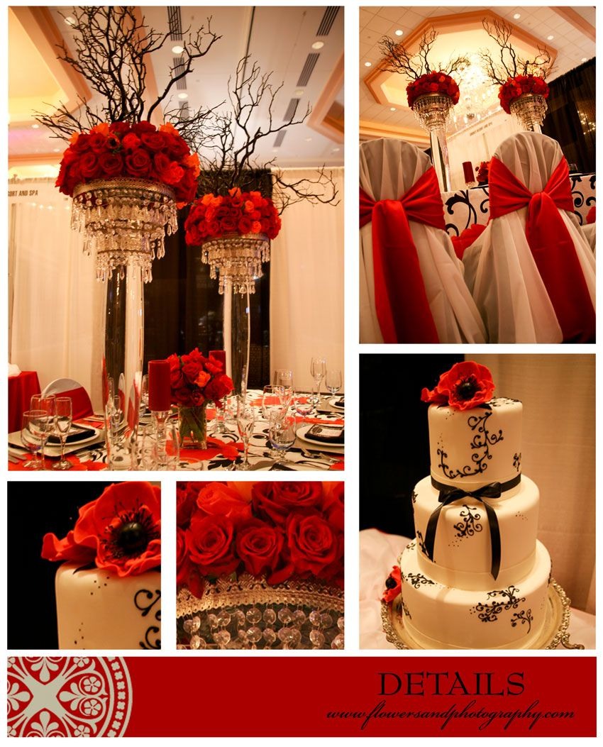 rosa vermelha topiaria