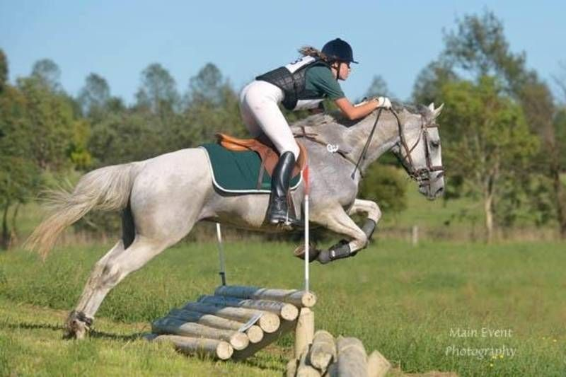 Show jumping / eventing prospect Bowral Bowral Area