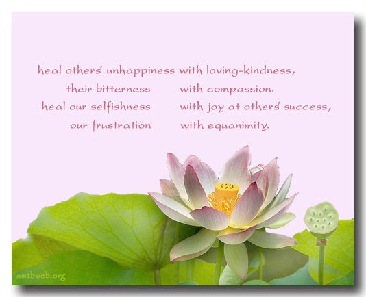 "Loving Kindness Quotes Delectable Healing Quotes  ""Heal Others' Unhappiness With Loving Kindness"