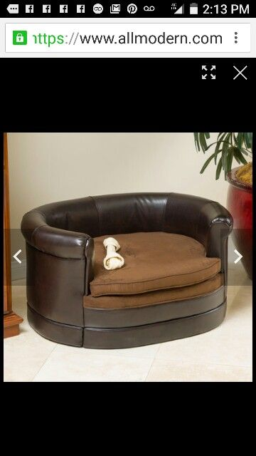 Superb Pin By Lona Maney Harris On Puppies Dog Sofa Bed Pet Beds Machost Co Dining Chair Design Ideas Machostcouk