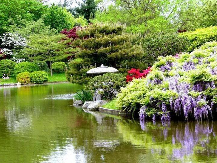 japan sushi gardens | japanese garden buenos aires - jardin papones ...