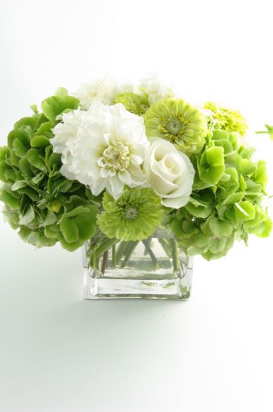 Parties flowers green white hydrangeas pinterest green with white i love hydrangeas love them fresh or dried i would suggest using potted ones in galvanized pots then plant them in your yard of your new mightylinksfo