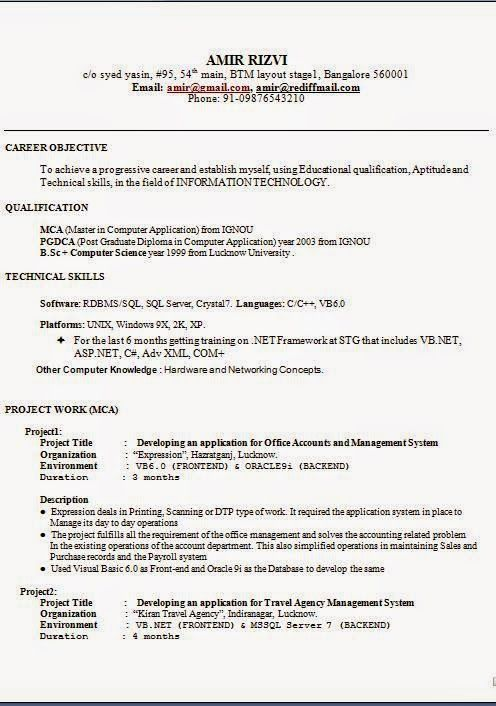 graphic designer resume sample Sample Template Example of
