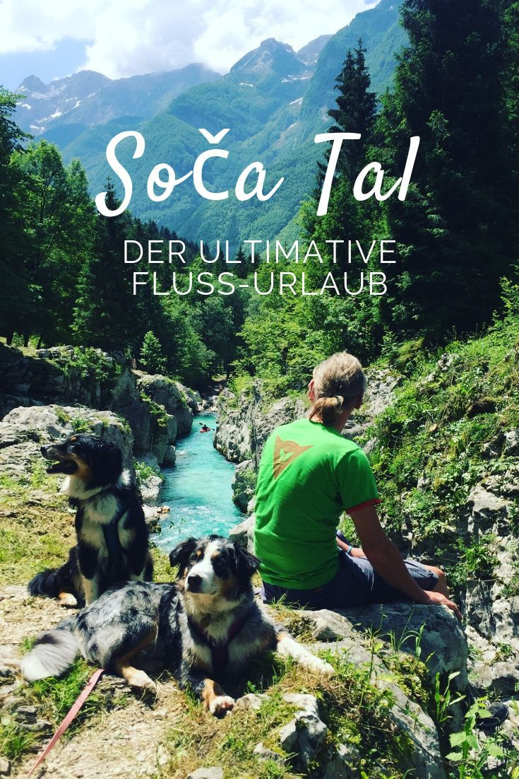 Photo of A camping holiday with our dogs on the aquamarine Soča river in Triglav -…