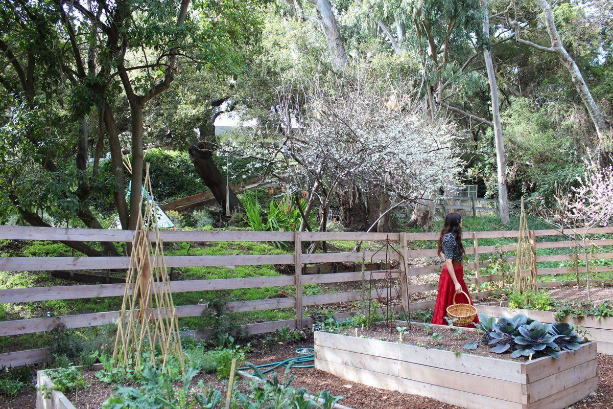 Veggie garden inspiration  Shivaus Eclectic Romantic Modern Ranch  Modern ranch Ranch and Modern