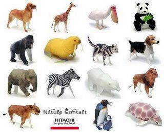 Essays on animals